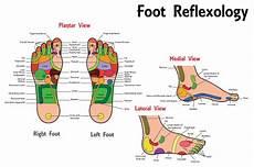 How To Do Reflexology Foot Chart Reflexology Foot Chart Stock Illustration Download Image