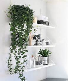 9 gorgeous ways to decorate with plants melyssa griffin