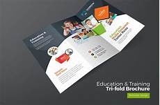 education trifold brochure brochure templates creative