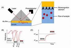 Surface Plasmon Resonance Surface Plasmon Resonance Spr Lifeasible