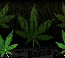 Download Weed Pictures Download Weed Stoner Hd Wallpaper 1440 X 1280 Wallpapers