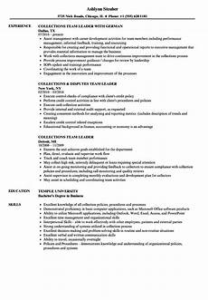 Collection Manager Resume Collections Team Leader Resume Samples Velvet Jobs