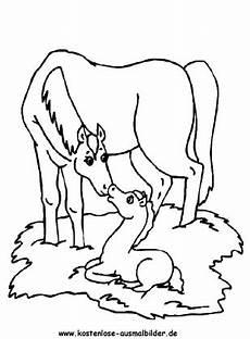 ausmalbilder pferd 17 tiere zum ausmalen malvorlagen