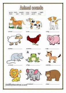 Animal Chart For Kindergarten Animal Sounds Key Included Animal Worksheets