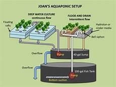 Aquaponics Setup Design Aquaponics In Greenhouse Guide Plans Diy