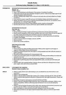 Pm Resumes Pm Lead Resume Samples Velvet Jobs