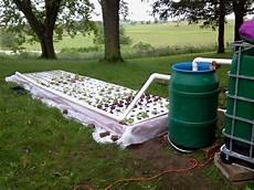 Aquaponics Setup Design How To Setup Aquaponics System At Home Things To Consider