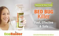 bed bug killer by ecoraider 16 oz fast and
