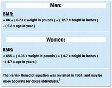 Bmr Chart For Basal Metabolic Rate Calculator What Does It Mean