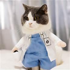 cat clothes for pet supplies cat clothes cats wear pet coats trempelya