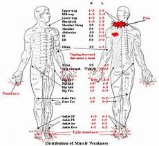 Arm Diagnosis Chart Diagnose Diagnose Upper Arm