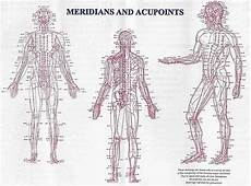Chinese Body Chart Meridians In Traditional Chinese Medicine Amc Miami