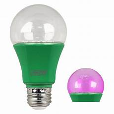 Types Of Light Bulbs For Growing Plants Feit Electric 60 Watt Equivalent A19 Medium E26 Base Non