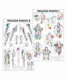 Travell Trigger Point Chart Travell Amp Simons Trigger Point Charts Lifehacked1st Com