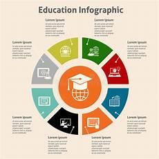 education infographic stock vector illustration