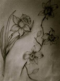 Drawings Of A Flower How To Draw Flowers 183 How To Make A Drawing 183 Drawing And