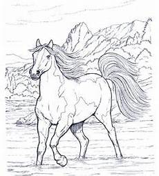 animal coloring page of to print places to visit
