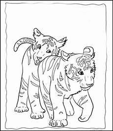 ausmalbilder zum ausdrucken ausmalbilder tiger