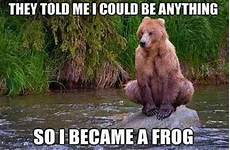 If You Could Be An Animal What Would You Be 20 Most Funniest Animal Meme Pictures And Images