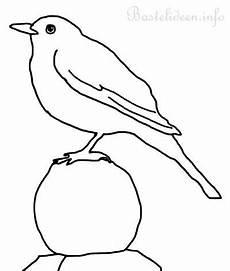 Nadines Malvorlagen Lyrics Search Results For Ausmalbild Vogel Calendar 2015