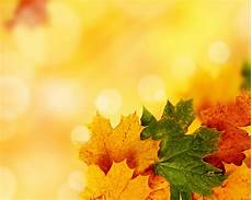 Autumn Powerpoint Background Yellow Autumn Background For Powerpoint Nature Ppt Templates