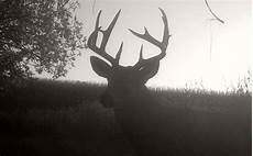 Free Deer Hunting Moon Chart 3 Critical Moon Phase Tips For Deer Hunting Whitetail