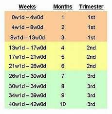 Pregnancy Weight Gain Month By Month Chart What Trimester Chart Are You Following Babycenter