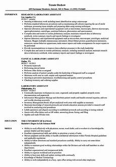 Sample Resume For Lab Assistant Laboratory Assistant Resume Samples Velvet Jobs