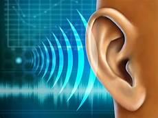 dermatite nell orecchio interno come sono percepiti i suoni da un orecchio bionico