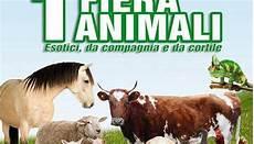 fiera animali da cortile prima fiera degli animali esotici da compagnia e da