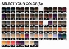 Schwarzkopf Professional Igora Color Chart Schwarzkopf Igora Royal Permanent Color Creme 12 1