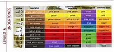 Redken Hair Toner Color Chart The Level System Hair Levels And Undertones Cosmetology