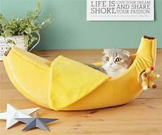 cat banana bed is a great place to go to slip petslady