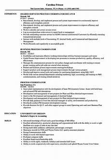 Resume The Process Process Coordinator Resume Samples Velvet Jobs