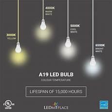 Ring Light Vs Led Panel A19 Dimmable Led Light Bulb 9 8w Energy Star 5000k