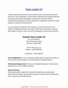 Cover Letter For Team Leader Position Examples Cover Letter For Sales Team Leader Position September 2020