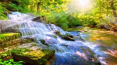 Nature 4k Wallpaper For Tablet by 2 Wallpaper 2019