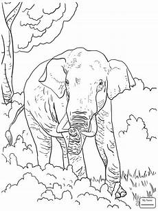 elephant family drawing at getdrawings free