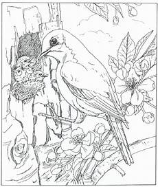 realistic nature coloring pages at getcolorings free