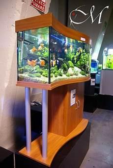 vasche aperte per acquari acquatica 2009 livia giovannoli
