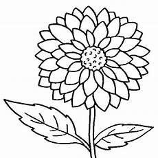 flower coloring pages coloringsuite com