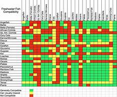 Red Shark Compatibility Chart Freshwater Fish Compatibility Chart Salt Fresh Water