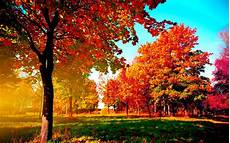 Autumn Powerpoint Background Autumn Wallpaper Examples For Your Desktop Background