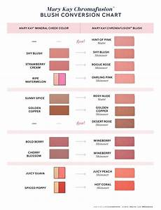 Mary Foundation Conversion Chart 2018 New Color Products Launched Pink Truth
