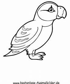 Malvorlage Vogel Zum Ausdrucken Ausmalbild Vogel 2 Zum Ausdrucken
