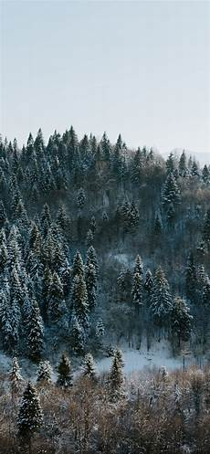 Iphone 11 Pro Wallpaper Winter by Winter Iphone X Wallpapers Free