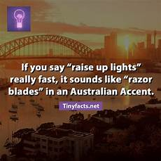 Raise Up Lights Tinyfacts If You Say Raise Up Lights Really Fast It