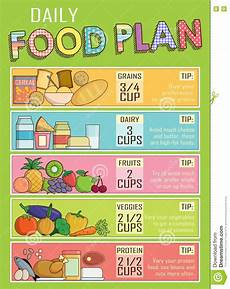 Daily Nutrition Chart For Children Healthy Daily Nutrition Food Plan Stock Vector