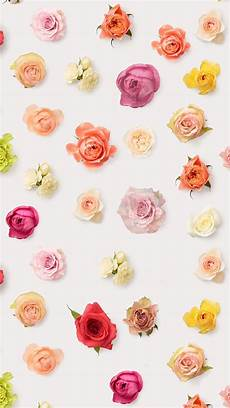 Iphone 6 Wallpaper Floral by Abstract Colorful Flower Floral Pattern Background Iphone