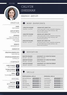 Resume Template Ms Word Professional Cv Ms Word Template Editable Downloadable